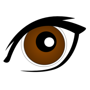 300x300 Eyeball Brown Eyes Clipart Free Clipart Images Image