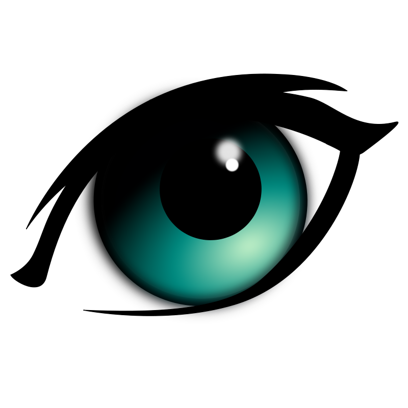 800x800 Eyeball Eye Clip Art Black And White Free Clipart Images 3 Image