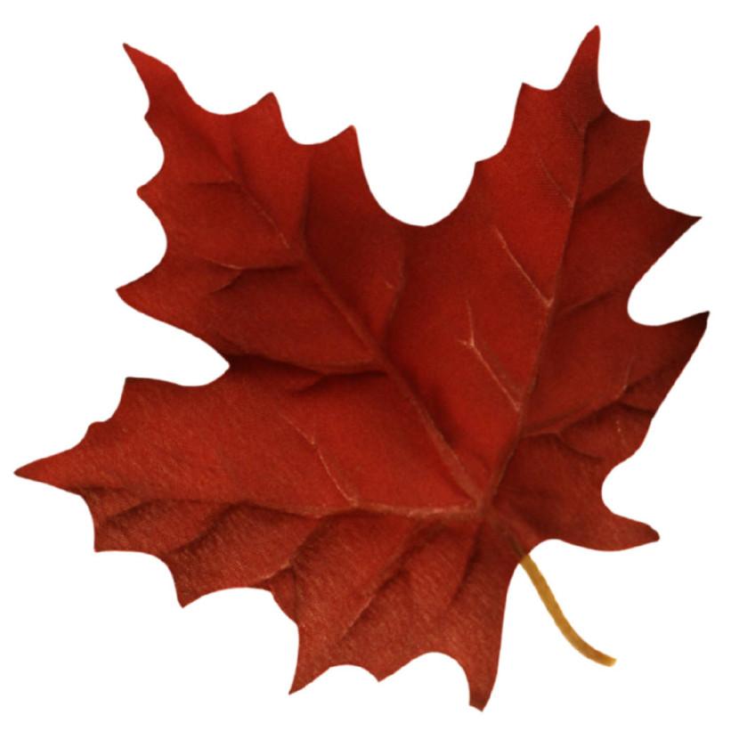 830x821 Maple Leaf Clip Art