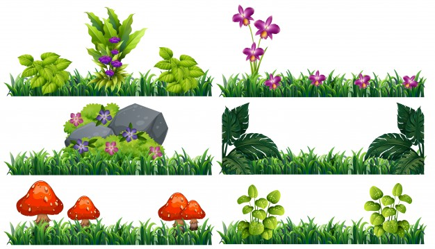 626x359 Flower Clipart Vectors, Photos And Psd Files Free Download