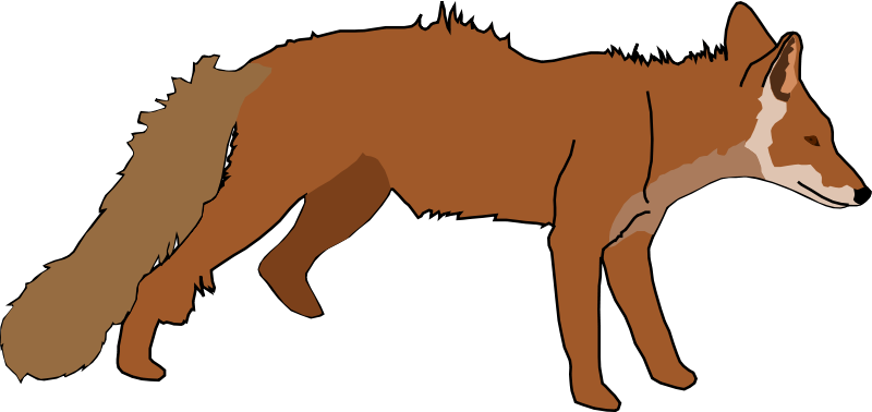 800x378 Free Realistic Looking Fox Clip Art
