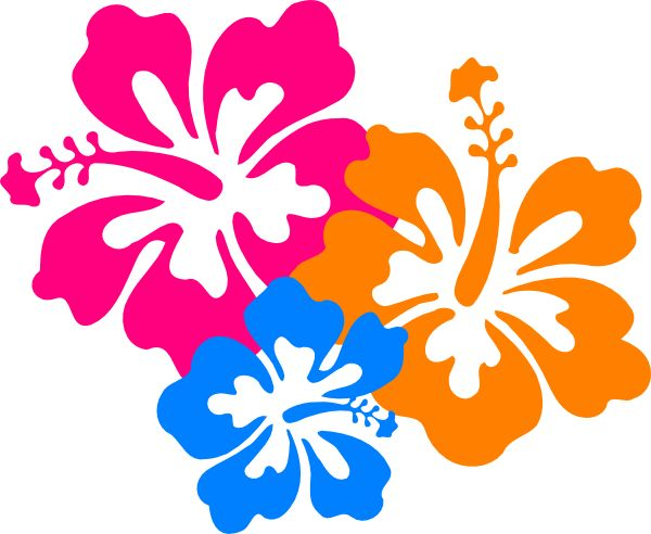 600x492 Hawaiian Flower Luau Clip Art Borders Free Clipart Images