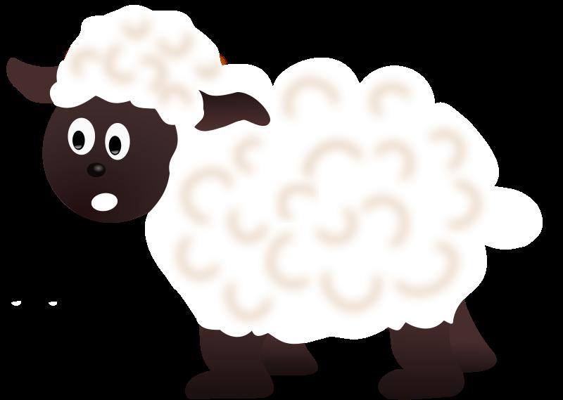 800x569 Cute Lamb Clipart