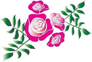 300x203 Top 76 Roses Clip Art