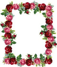236x280 Rose Clip Art Border