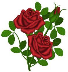 236x248 Clip Art Roses