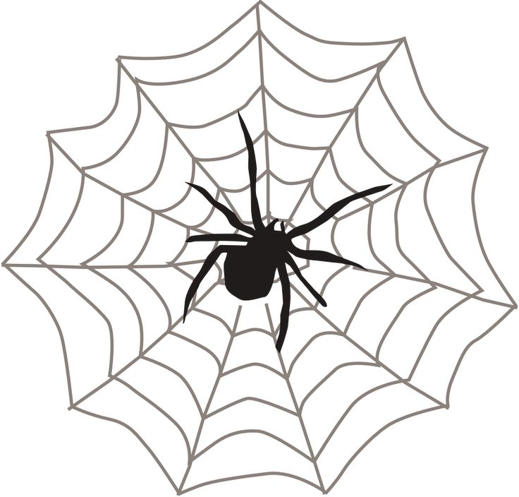 Free Clipart Spider