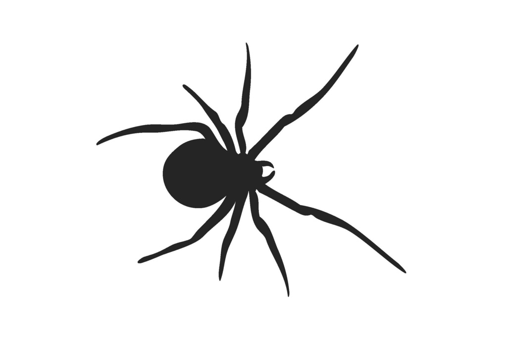1024x724 Silhouette Clipart Spider