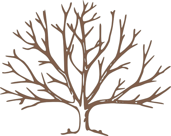 600x477 Brown Bare Tree Clip Art
