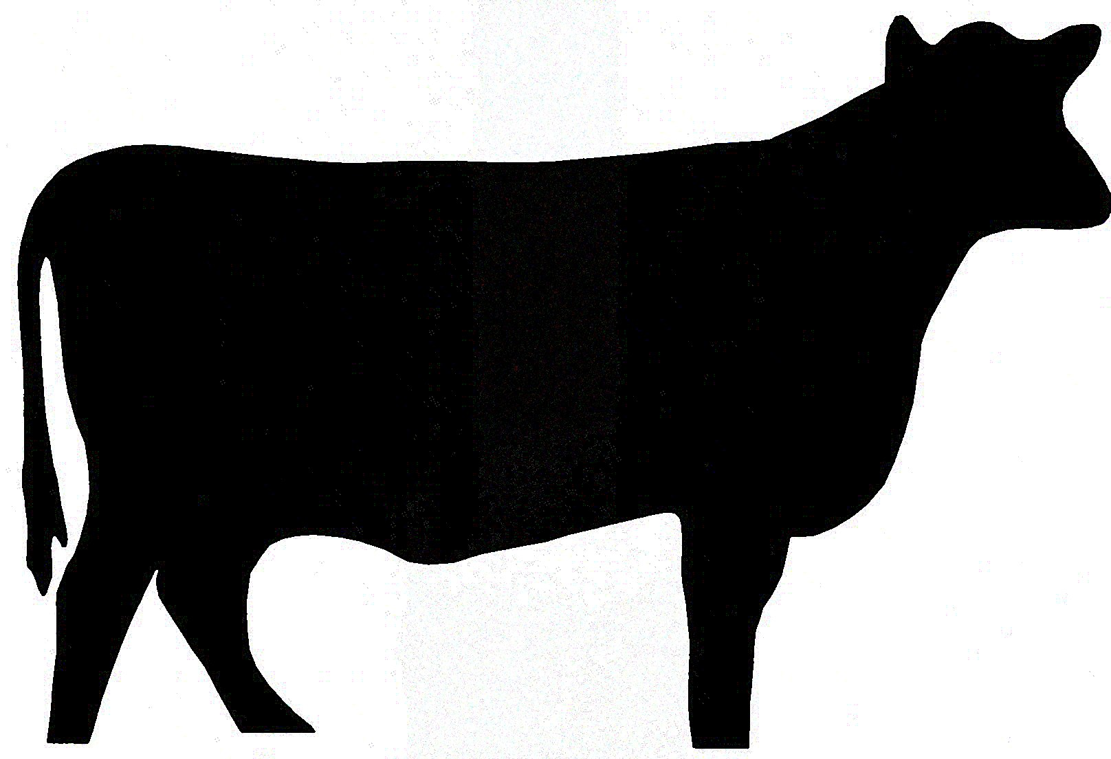 1616x1104 Cow Silhouette