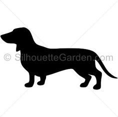 236x234 Dachshund Decal Dachshund Sticker Dachshund Car Dachshund
