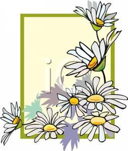 253x300 Flowers