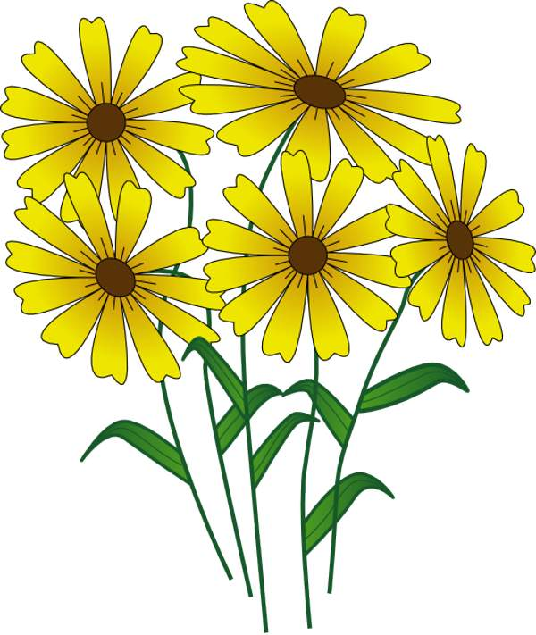 600x711 Free Flowers Clipart