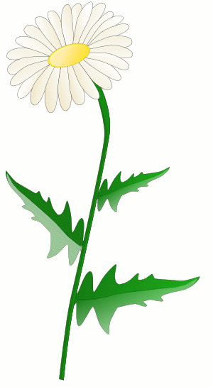 300x545 Free Daisy Clipart Public Domain Flower Clip Art Images And 5