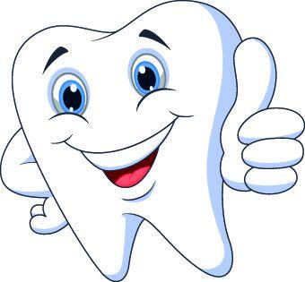 340x315 Beautiful Teeth Clipart Free Dental Vector 3 119