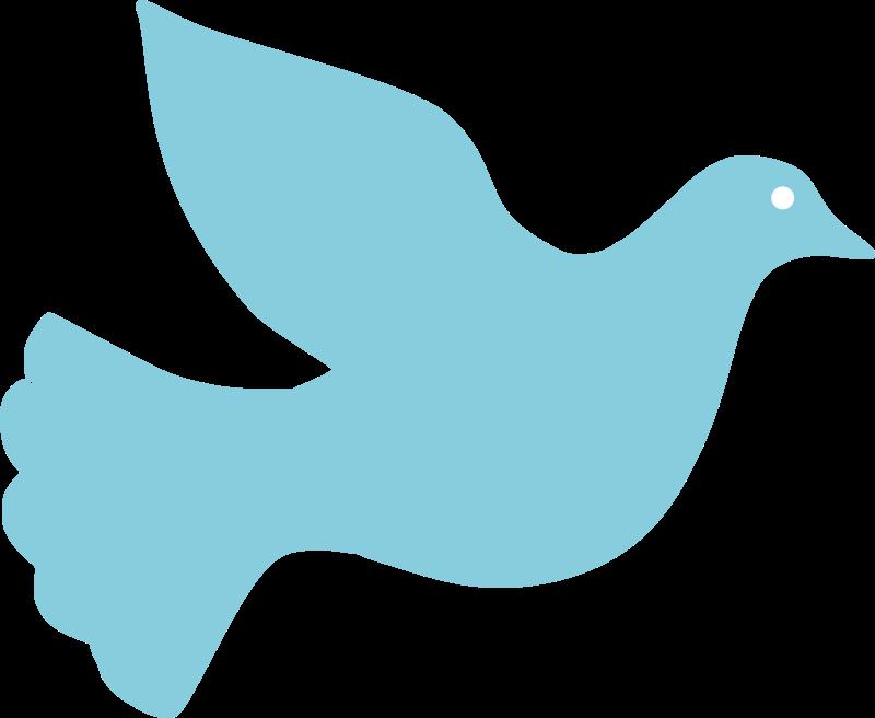 800x656 Descending Dove Clipart Free Images 2