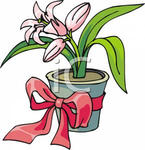 290x300 Free Clipart Image A Pink Easter Lily In A Potted Plant