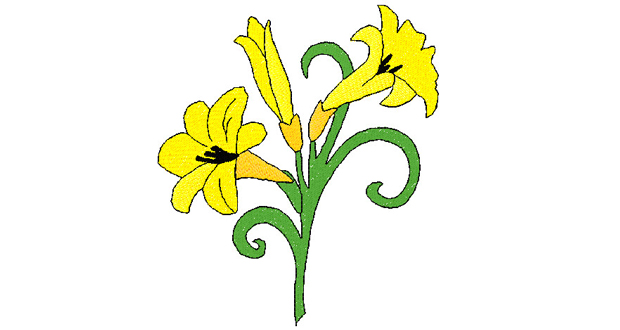 620x330 Graphics For Easter Lily Graphics