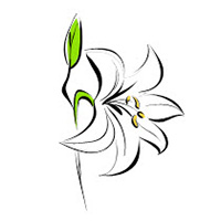 200x200 Lily Clipart