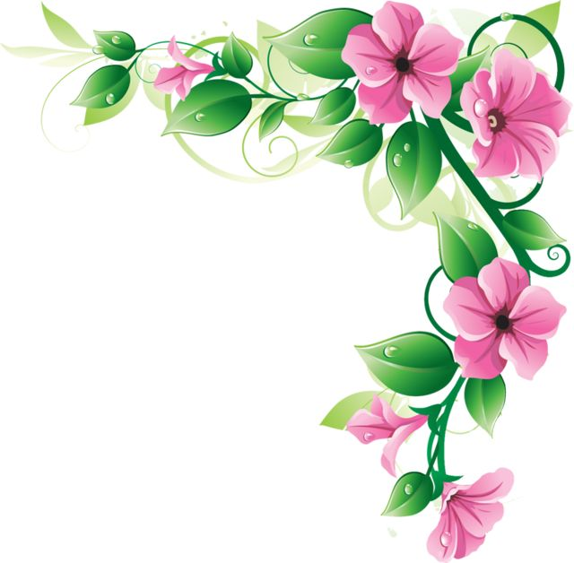 640x628 Lily Clipart Pink Flower Border