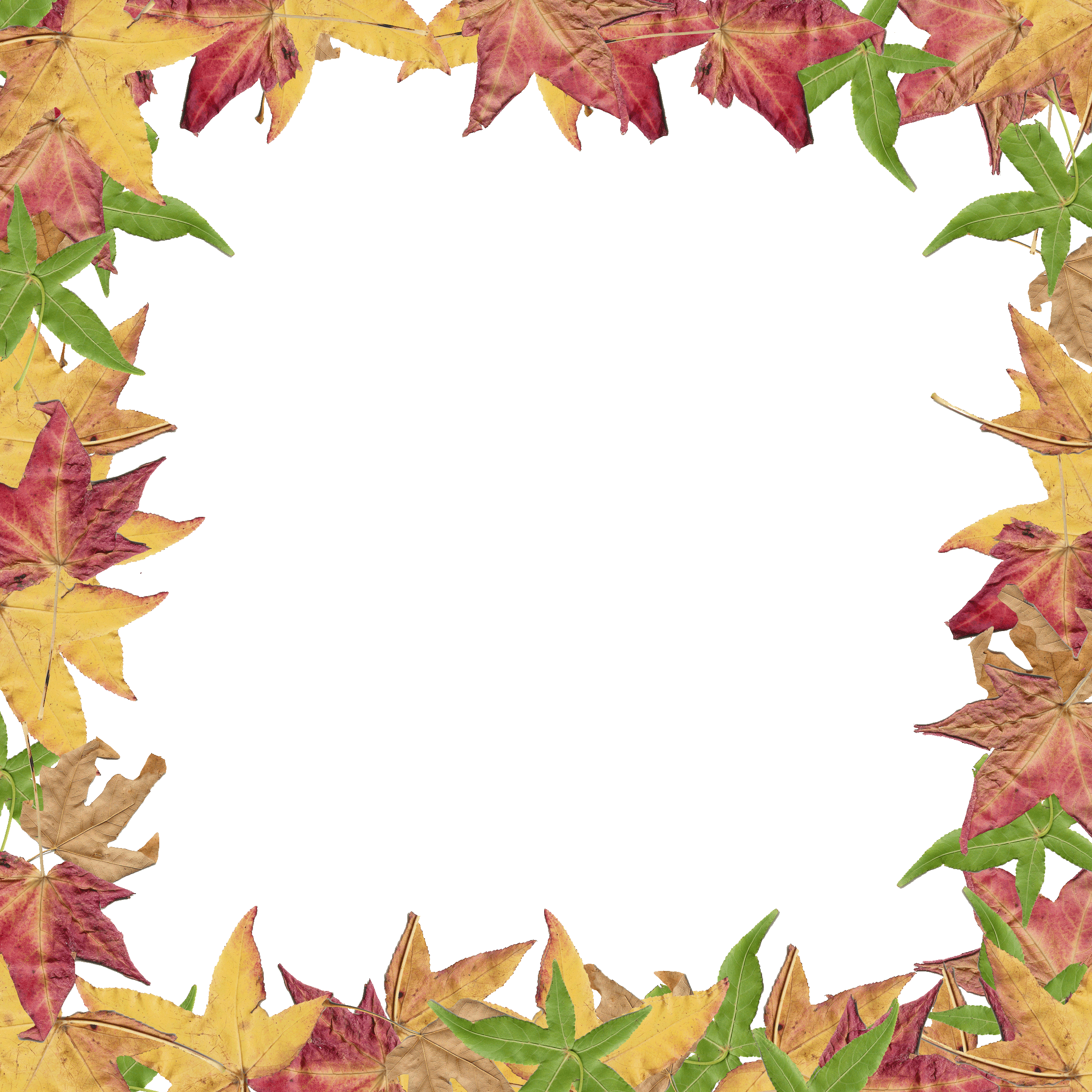 2400x2400 Fall Border Fall Leaves Clip Art Image 4