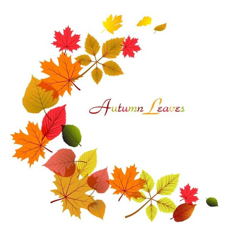 Free Falling Leaves Clipart