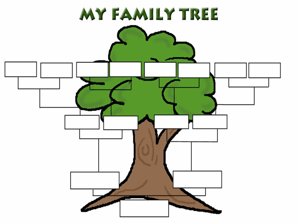 960x720 Best Family Tree Clipart