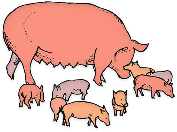 589x440 Farm Animals Clipart Animated