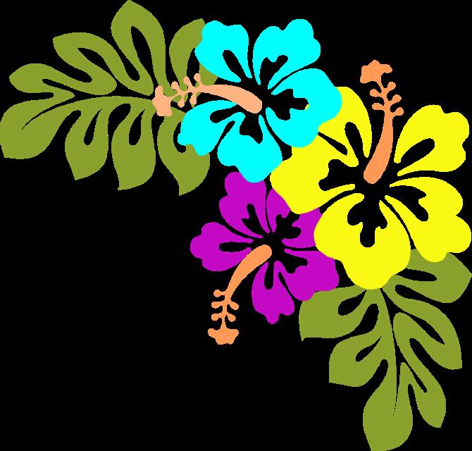 670x640 Hawaiian Clipart Flower