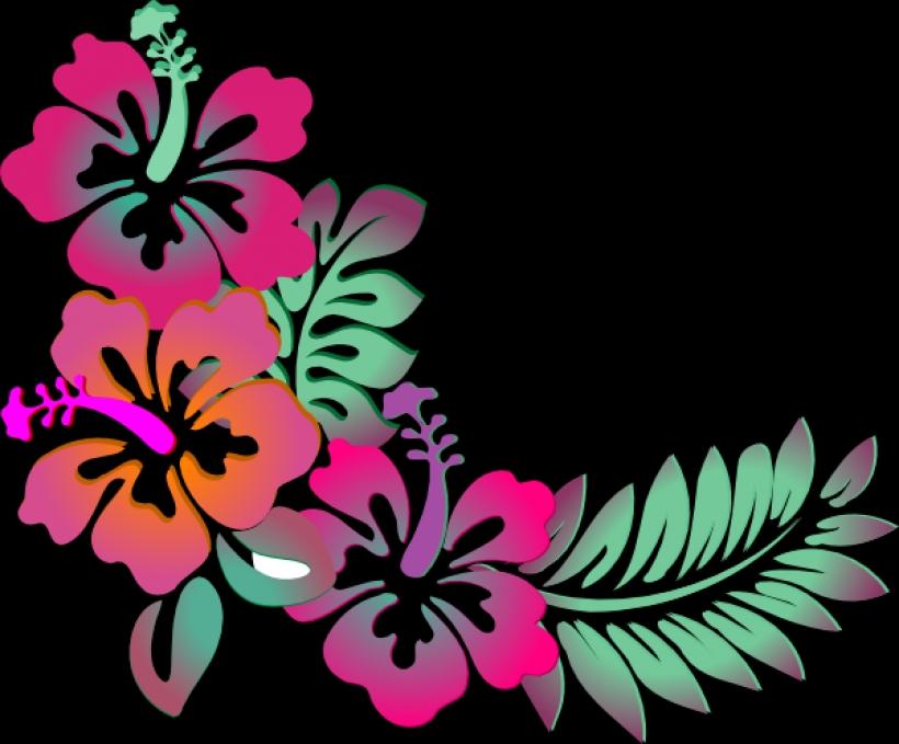 820x679 Hawaiian Flower Clip Art Borders Clipart Panda Free Clipart Images