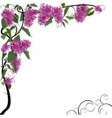 380x400 Floral Borders Images