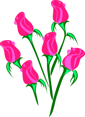291x400 Pink Rose Border Clipart