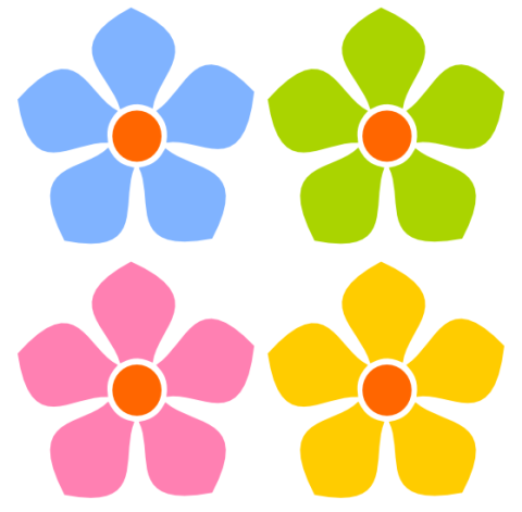 480x471 Flower With Transparent Background Clipart