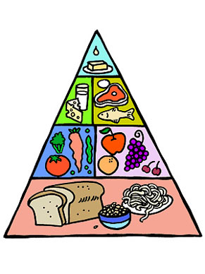 291x388 Free Food Clipart For Teachers
