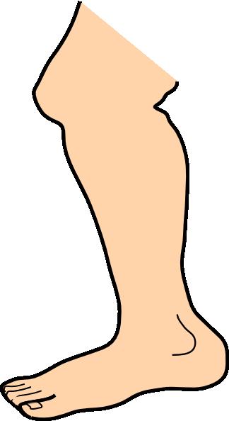 324x594 Foot Feet Clip Art Free Clipart Image