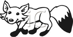 300x153 and White Fox