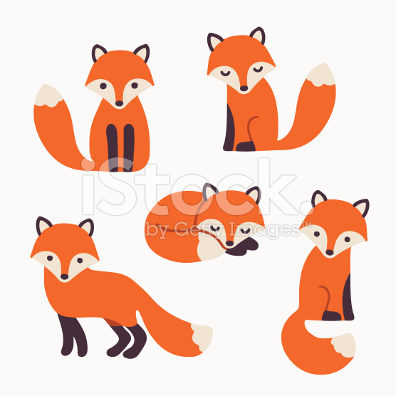 556x556 Set Of Cute Cartoon Foxes In Modern Simple Flat Style. Isolated