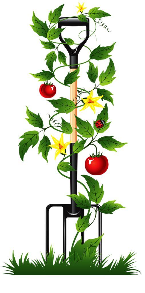 Free Garden Clipart