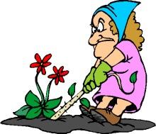 220x189 Garden Clipart Funny