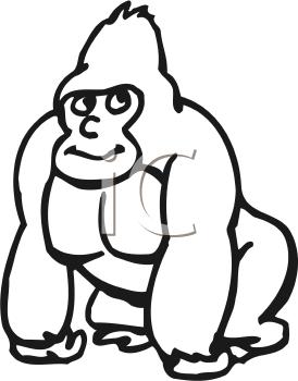 274x350 Royalty Free Gorilla Clip Art, Primate Clipart