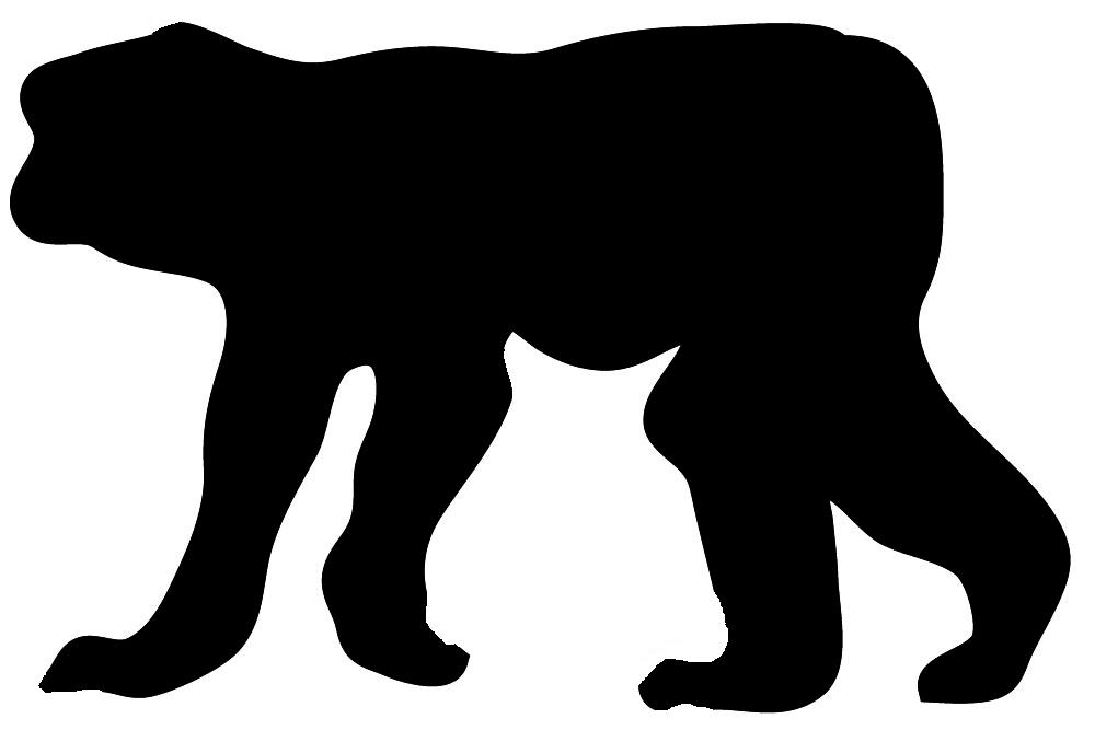 1000x667 Shaow Clipart Gorilla