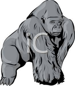 263x300 Top 83 Ape Clip Art
