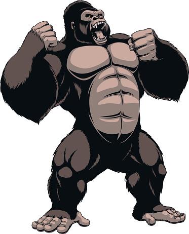 373x462 Top 94 Gorilla Clipart