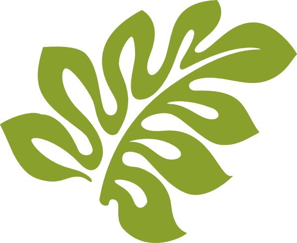 600x492 Hawaii Clipart Leaf