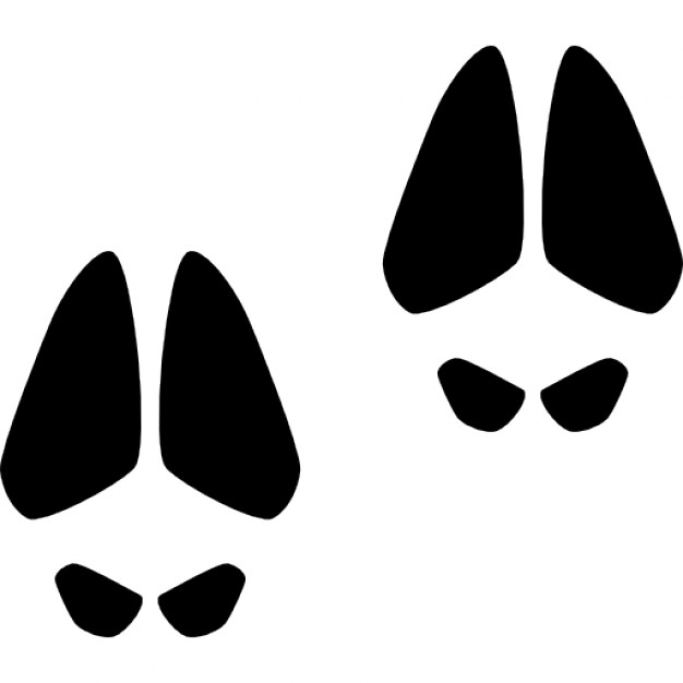 626x626 Animal Footprints Of A Mammal Icons Free Download