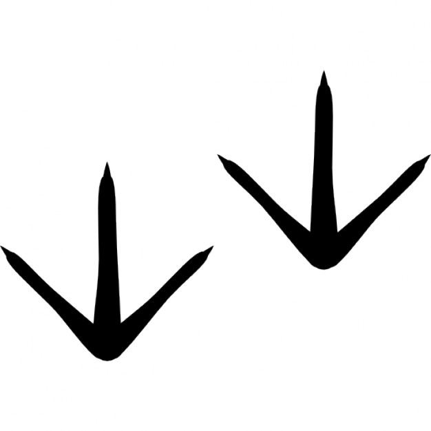 626x626 Chicken Footprints Icons Free Download