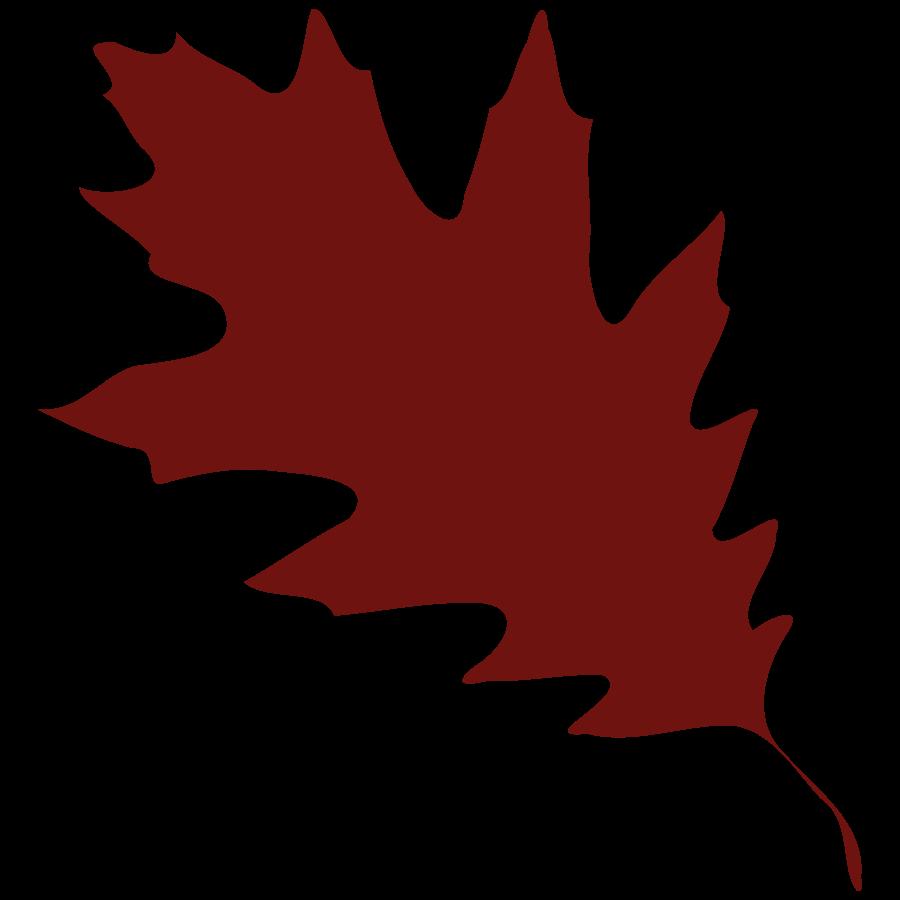 900x900 Leaf Oak Leaves Clip Art Free Clipart Images