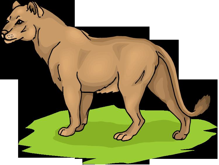 750x565 Free Lion Clipart