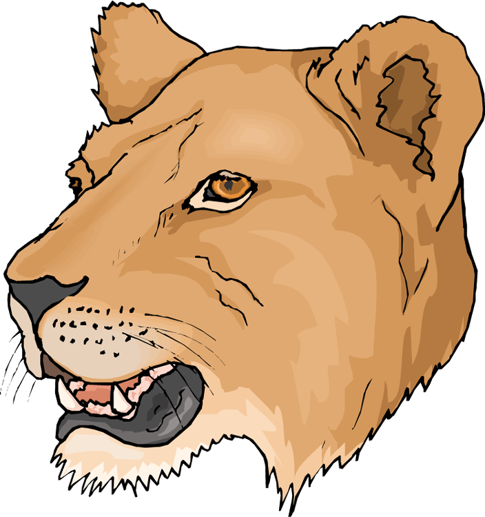 704x750 Free Head Lioness Clipart