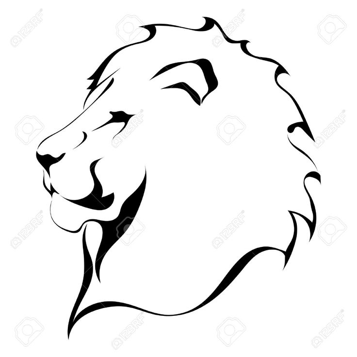736x736 Simple Clipart Lion